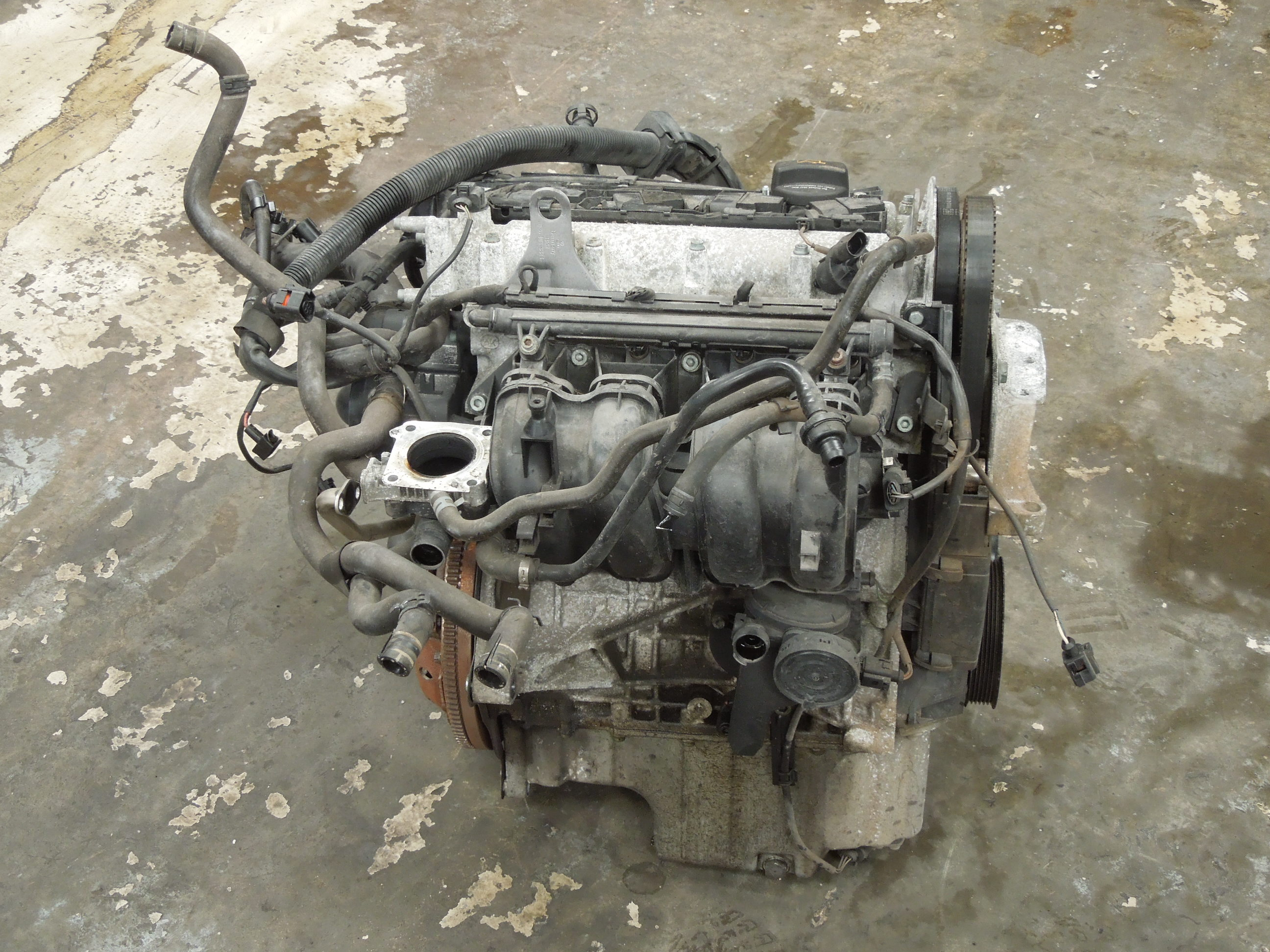 diesel image unleashed audi tdi suv business monster has a insider new engines